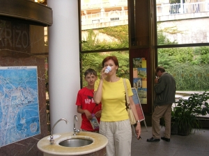Мариински Лазни - источники здоровья