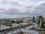 Вид с собора Нотр Дам де Пари
