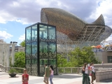 Морской Олимпийский стадион и мухи в аквариуме, правда, не живые.